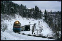 Про железную дорогу в Карпатах / Древний дизель-поезд венгерского производства Д1 тащится к о.п. Ямна, 2010