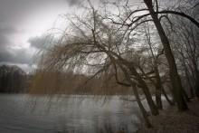 Холодная весна / Один из апрельских дней на Комсомольском озере