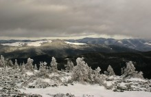 Морозная свежесть Карпат / за окном жарко - самое время вспомнить каково было в горах в канун Нового года...