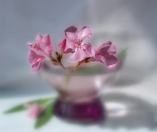 С добрым утром!:) / без ком