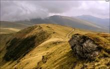 Камень и дорога / Путь к Близнице. Карпаты 2010