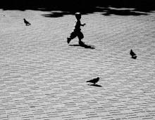 Мальчик и голуби / ....................