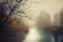 Morning magic / Туман и утро