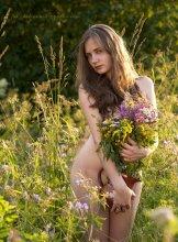 Анна / в лугах цветущих