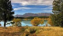 Золотая осень на озере Текапо / Снимок сделан в апреле 2011 года на Южном острове Новой Зеландии.