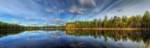 зазеркалье / лесное озеро.