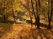 Осенью... / *****************