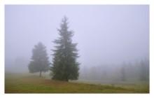 Когда с гор спускаются облака / Пардон за репост. Вчера при заливке на сайт перемудрил с параметрами  Карпаты. Туманная осень