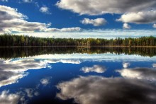 лесное зеркало / карелия