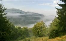 Карпатское утро / Свидовец, 2010