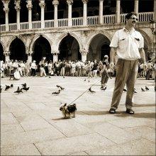 Венецианская сторожевая / Венеция, проходя мимо очереди в Дворец Дожей, 1997