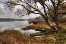 Осень, лодки и рыбак / *****