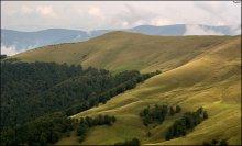 Карпатские склоны / Район Свидовецкого хребта, 2010