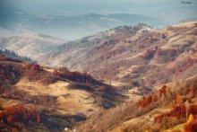 Карпатский ноябрь / С наступающими  Фотообоина 1920*1080 есть здесь: http://photo.qip.ru/users/maxhelloween/3775552/95967539/full_image/