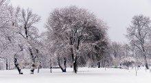 Снежный пейзаж / Снежный пейзаж