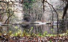 Germany, Hemer. / Ведьмино Озеро.