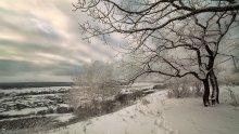 Хмурый зимний день. Близ Саратова / *****