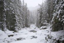 зимняя река / Словакия. Высокие Татры