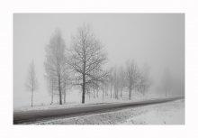 Утро. Туман. Дорога... / ******