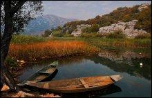 осень на озере / Скадарское озеро