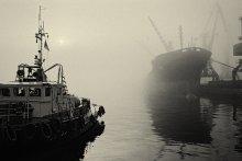 Туманное утро / Порт Одесса. Утренний туман.