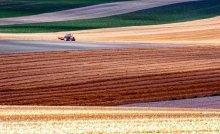 Summer Fields / Summer fields in Burgundy