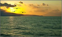 улетая к солнцу... / Курильские острова