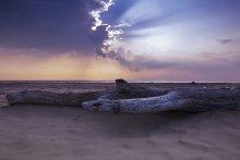 Без названия / 7 июля 2012. Рижский залив.