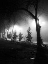 Пульсация ночи / снимок сделан на старика нокия н73