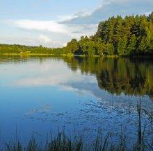 озеро Белое / Витебский р-н