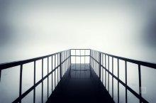 Alone in the fog / На озере осенью
