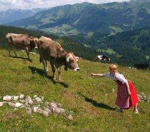 """"""" Разрешите познакомиться. """" / Альпы Австрия 2012"""