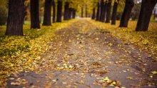 Осень в Праге / октябрь 2012, летенские сады