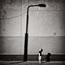 ночь, улица, фонарь... / ***