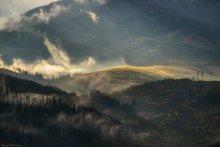 / Карпаты. Ноябрь. Один из немногих моментов, когда, хоть на минуту, пробивалось солнце. Приглашаю в фототур! http://fototour.by
