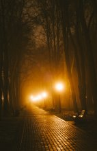 Без названия / Туман, 5 утра