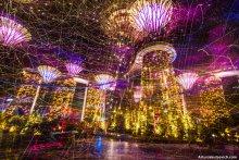 Ночной Сингапур / декабрь 2012, Marina Bay Восьмое чудо света в Сингапуре. http://planet.jakutsevich.ru/gardens-by-the-bay-in-singapore/