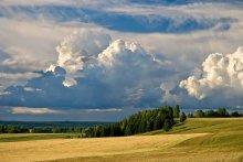 Июль. / пейзаж,природа,лето,июль