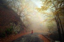 Покидая осень / Дорога на Ай-Петри, ноябрь. Облака наплывали рваными кусками,  полностью погружая все в себя.