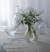 Forget me not ... / .......................