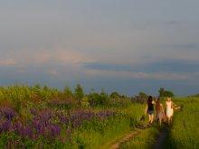 За свежим воздухом и запахом травы,за чистым небом. / Летние прогулки.