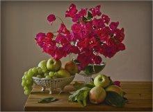 Новый урожай / Бугенвиллия и яблоки