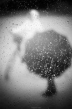 Дождь как дождь... / * * * * *