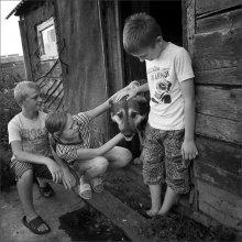 / дети,деревня,собака,дружба,чувства