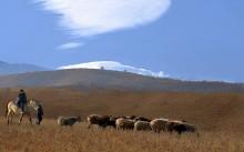 Пастухи / и облако