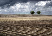 Spring / Plowed spring fields  north of Troyes (Burgundy / France)