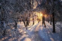 Морозное утро / -25