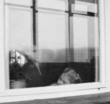 Самого главного глазами не увидишь. / Только любящее сердце может отличить фальшивое и ненастоящее в человеке от истинного и естественного. Но, с другой стороны, сердце никогда не сможет ответить, почему злая бессмыслица преобладает в человеке и откуда берется ее сила и могущество.Зорко одно лишь сердце. Самого главного глазами не увидишь. Антуан де Сент-Экзюпери.