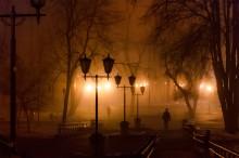 утро в городском парке / февраль 2014. густой туман. утро в центральном парке Гродно