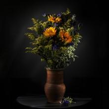 Полевые цветы / ---